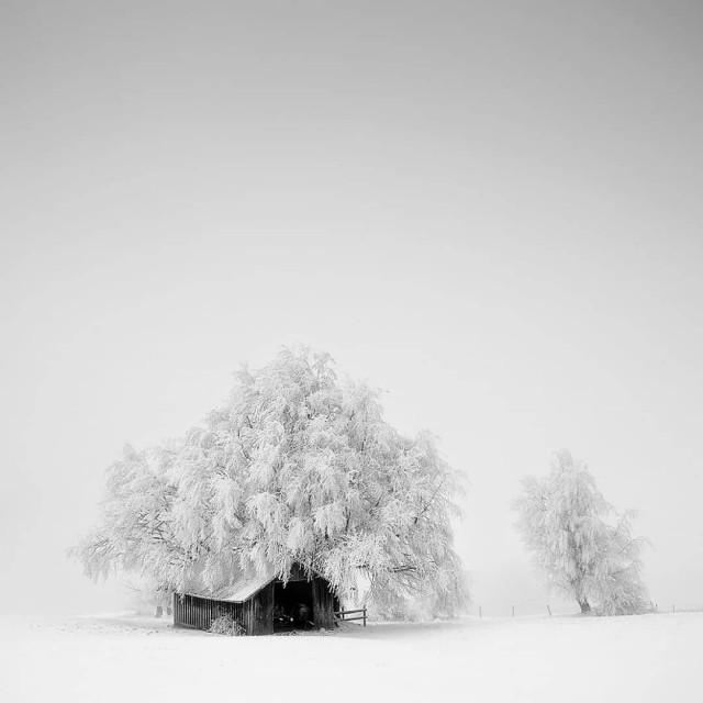 Фотограф Кармен Шпицнагель