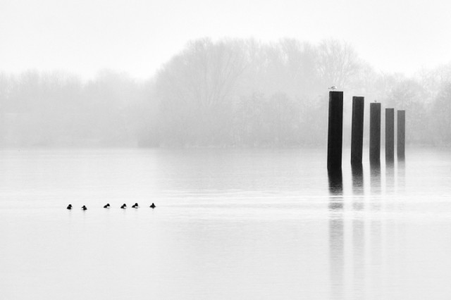 Дождливый день, Нидерланды. Фотограф Хенк де Хаан