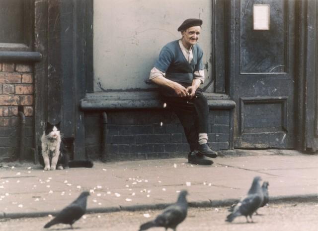 Голуби, Манчестер, 1968. Фотограф Ширли Бейкер