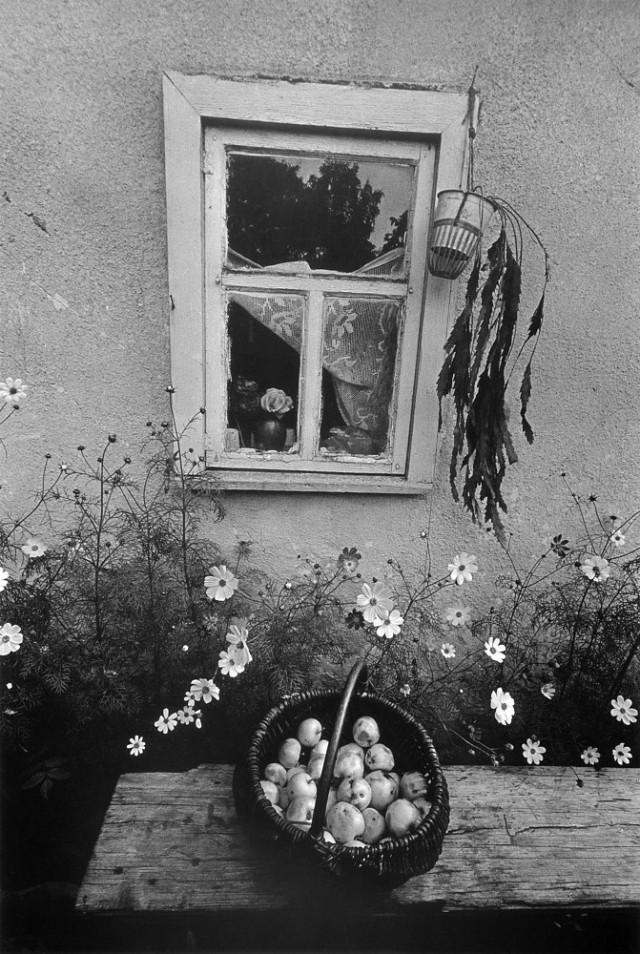 Пакруойис, 1979. Фотограф Альгимантас Кунчюс