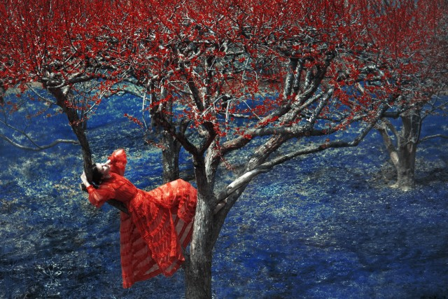 Эрик Мадиган Хек: феерия цвета и живописность кадра