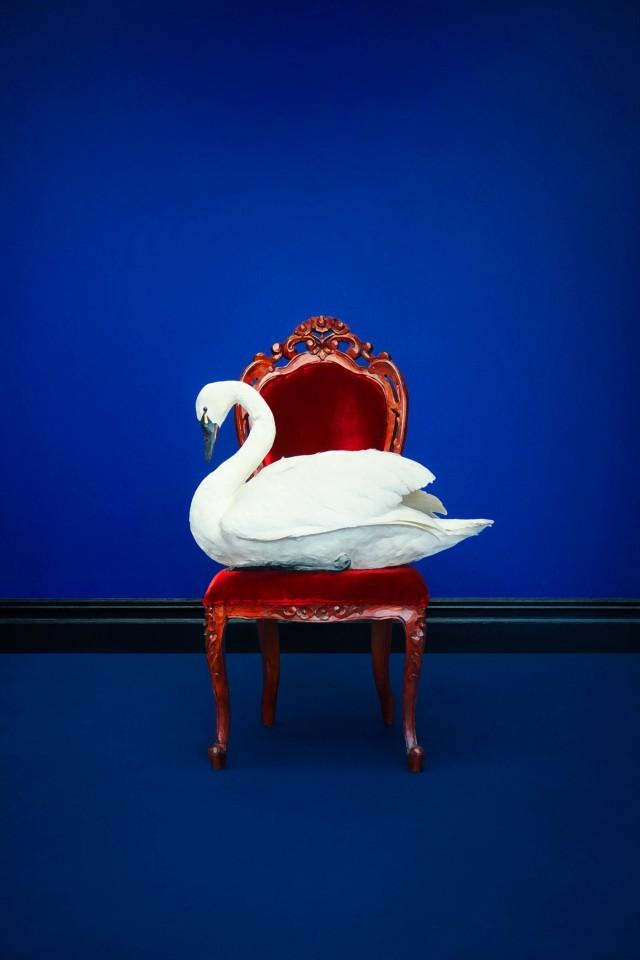 Для Neiman Marcus, 2012 год. Фотограф Эрик Мадиган Хек