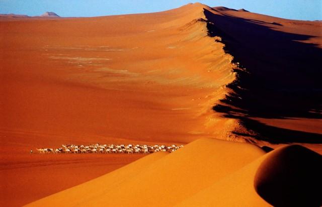 Караван покидает соляную шахту Таудени (или Тауденни), Мали. Фотограф Паскаль Мэтр