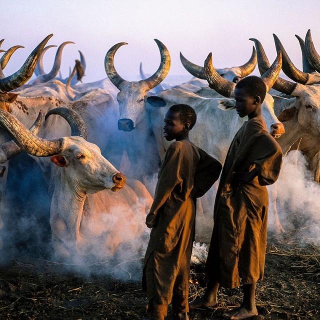 Район озера Чад, Африка. Фотограф Паскаль Мэтр