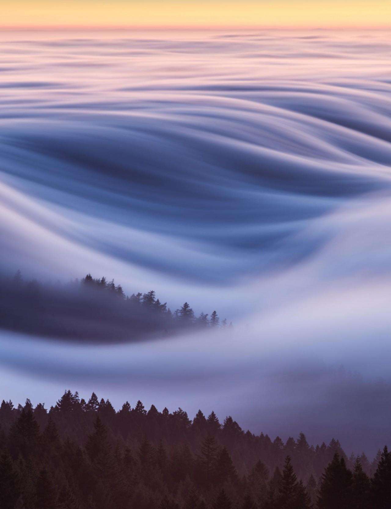 Волны тумана укрывают гору Тамальпайс в округе Марин, Калифорния. Автор Дэвид Одишо