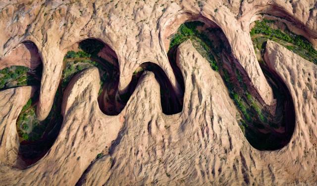 Зелень вдоль реки извилистого каньона в штате Юта. Автор Дэвид Свиндлер