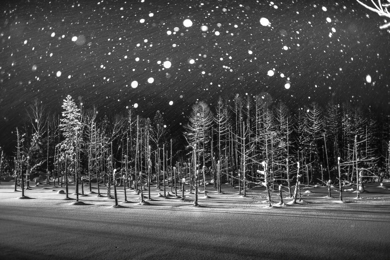 Снежинки над Голубым прудом Биэй, Хоккайдо, Япония. Автор Рукка Й Ито
