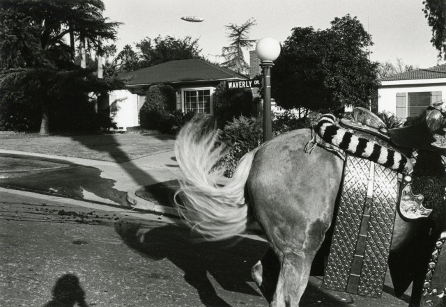 Парад роз, Уэверли Драйв, Лос-Анджелес, 1980. Фотограф Гэри Крюгер