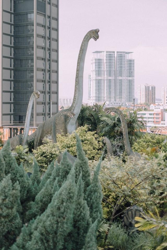 Избранные работы, 2010-2020 год. Фотограф Лиза Соргини