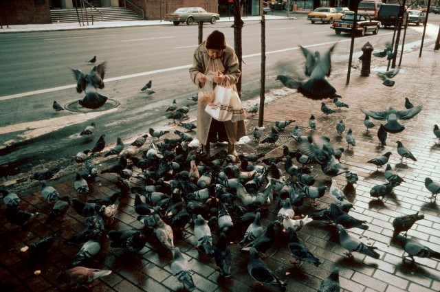 Женщина кормит голубей на Второй авеню, Нью-Йорк. Фотограф Томас Хёпкер
