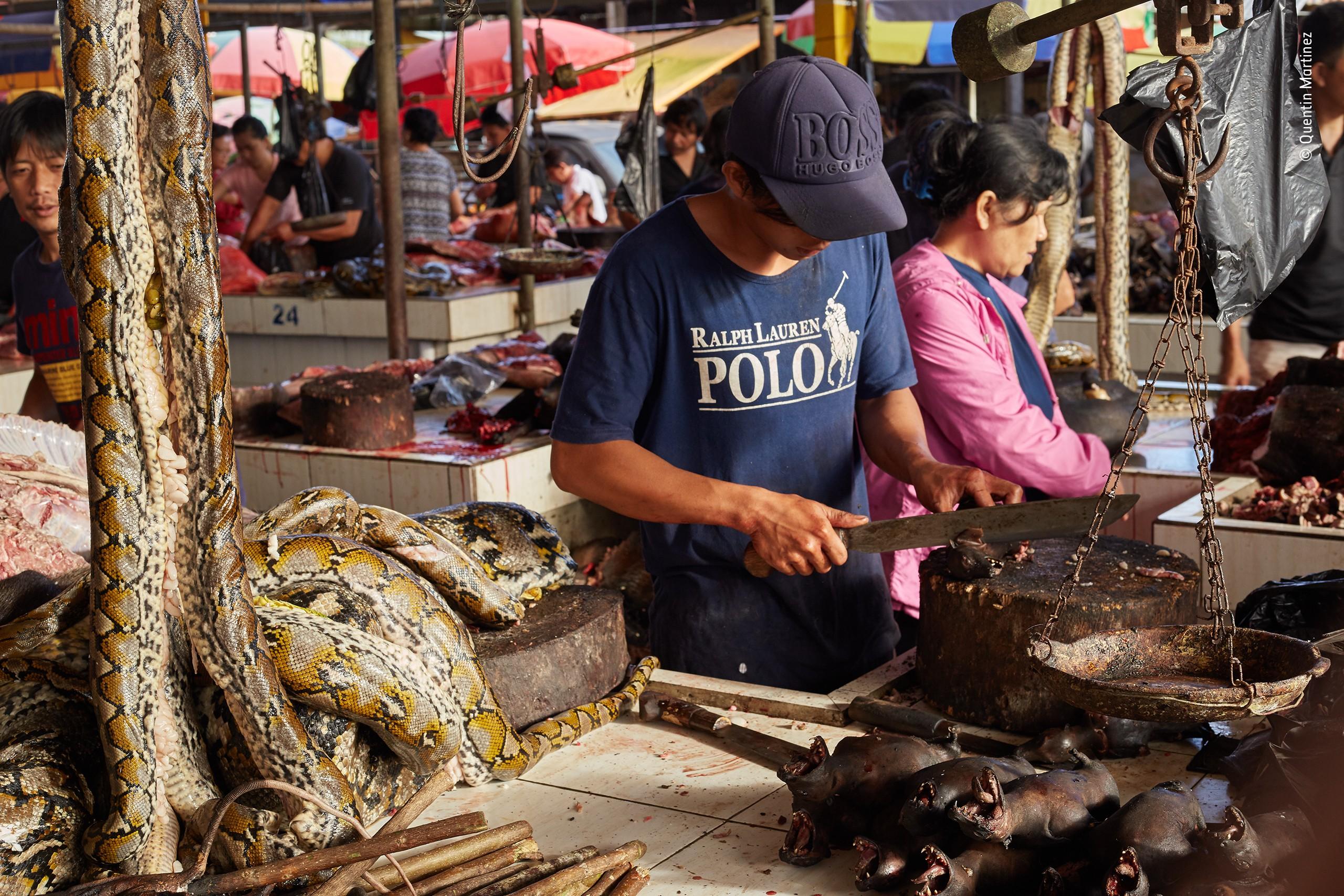 «Дикая природа в жанре фотожурналистики», 2020. «Рискованное занятие». Рыночный торговец разделывает летучих мышей, питонов и крыс в Индонезии. Автор Квентин Мартинес