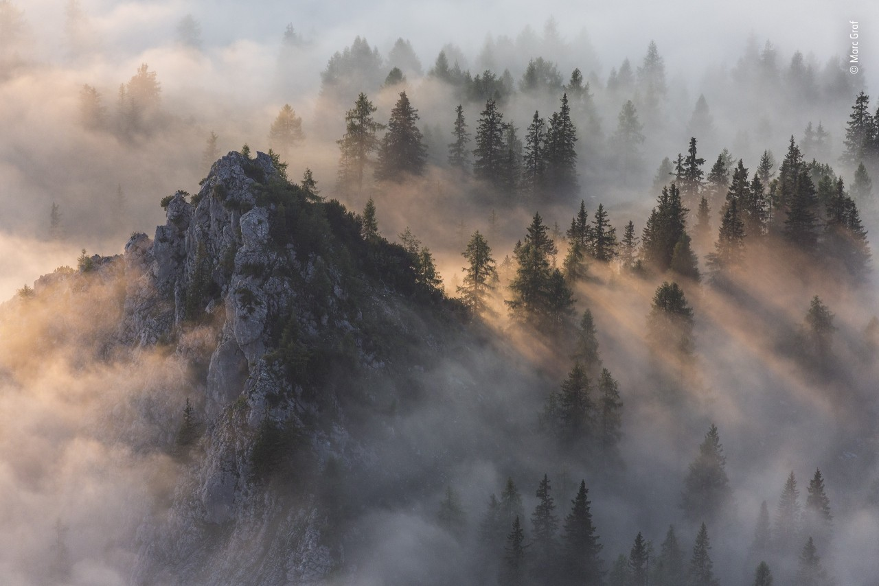 «Земная среда обитания», 2020. Берхтесгаден, единственный альпийский национальный парк Германии. Автор Марк Граф