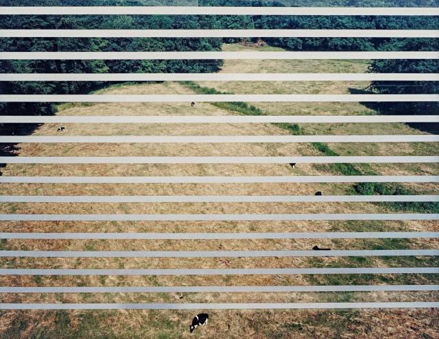 Шоссе, Меттманн, 1993. Фотограф Андреас Гурски