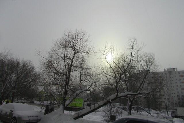 Валерий - фотоистория - 31.05.2021