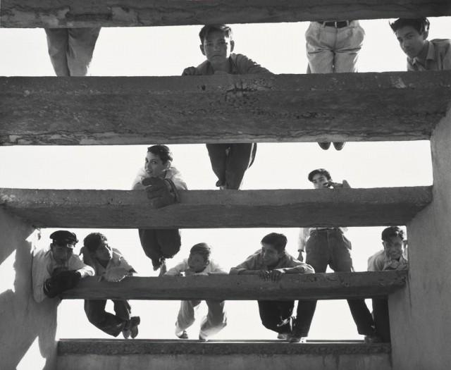 «Воробушки», 1940-е. Фотограф Лола Альварес Браво