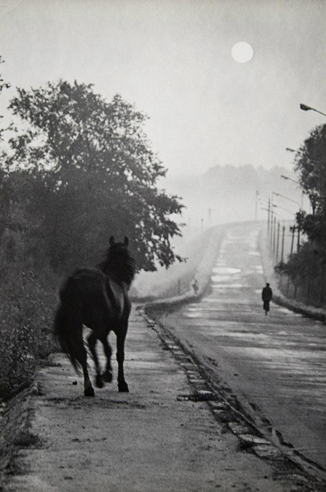 Дорога, ок. 1980. Фотограф Виктор Бутра