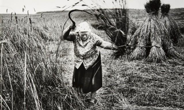 Жнея. Деревня Белолозы, Дятловский район, 1990. Фотограф Евгений Козюля