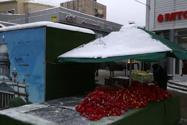 14 февраля. Фотограф Илья Штуца