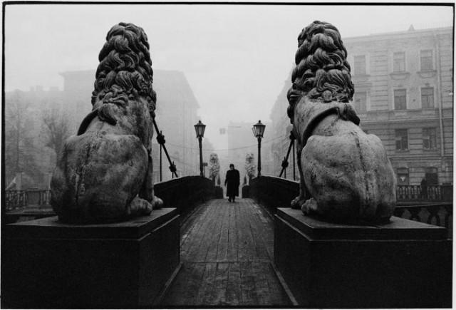 Львы, 1982. Фотограф Борис Кудряков