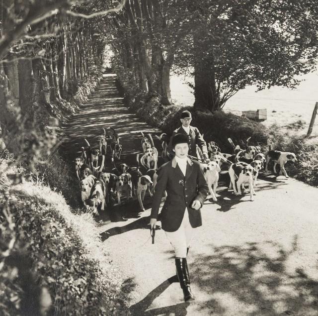 Герцогиня и герцог Ньюкасл с собаками. Норман Паркинсон