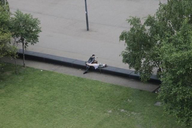 Сцена в лондонском парке с точки зрения птицы. Фотограф Czolacz