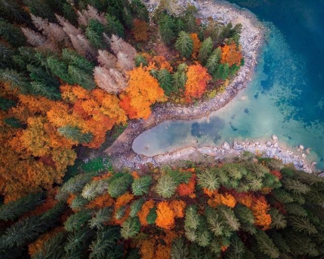 Аэрофотоснимок осенних деревьев вокруг озера в Италии. Фотограф Нина Лозей