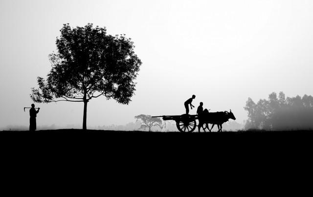 Начало дня, Бангладеш. Фотограф Амдад Хоссейн