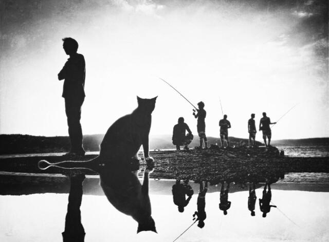 Категория «Мобильная фотография», 6-ая фотопремия 35AWARDS. Фотограф Vural Yalim