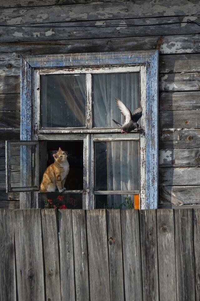 Категория «Стрит-фотография», 6-ая фотопремия 35AWARDS. Фотограф Сергей Флоренцев
