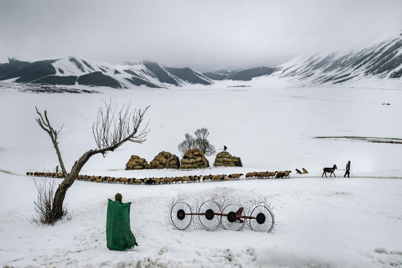 Поощрительная премия в категории «Путешествия и приключения», 2020. Зимняя жизнь на востоке Турции. Автор Орхан Танхан