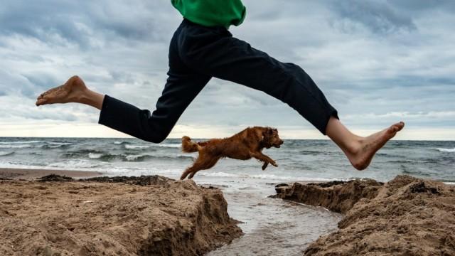 Поощрительная премия в категории «Уличная фотография», 2020. Мальчик в прыжке с собакой на пляже острова Кейп-Бретон. Автор Пол Макнейл