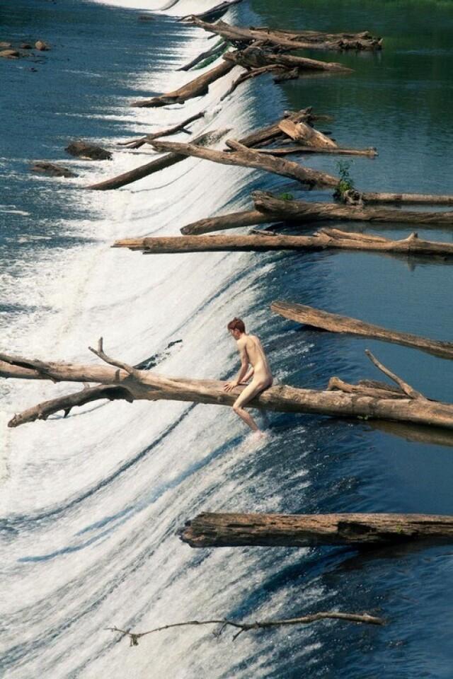 Плавающие деревья, 2012 год. Фотограф Райан МакГинли