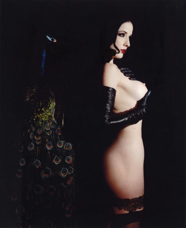 «La Vita Dita». Дита фон Тиз, 2002. Фотограф Мэрилин Мэнсон