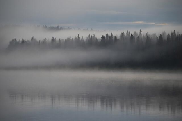 Начало осени в национальном парке Югыд ва. Фотограф Игорь Шпиленок