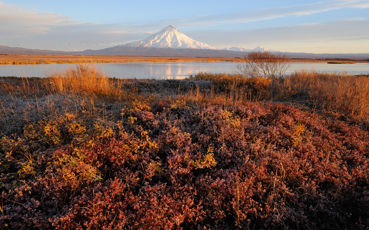 Кроноцкий вулкан золотой осенью. Кроноцкий заповедник. Фотограф Игорь Шпиленок