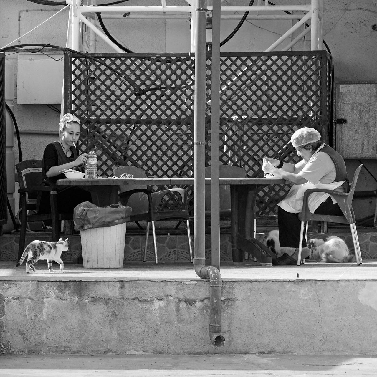 Ларнака, Кипр, 2018. Фотограф Борис Назаренко