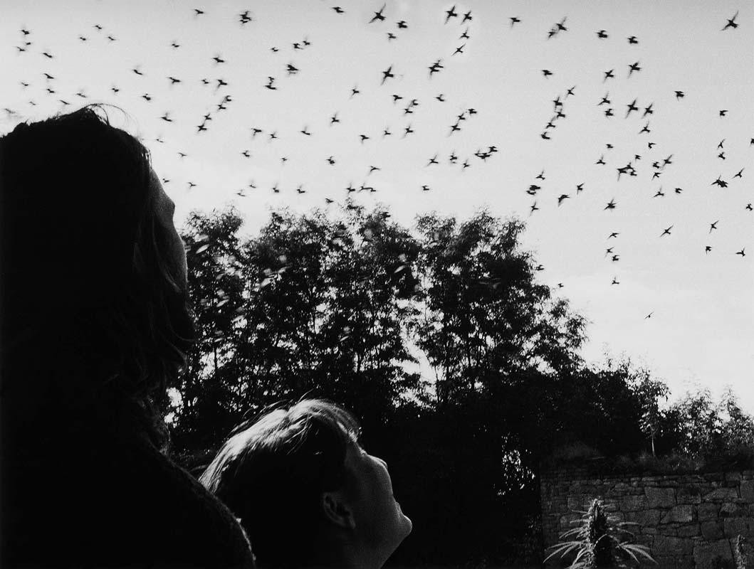 Из серии «Путь к свободе», Чехия. Йиндржих Штрейт