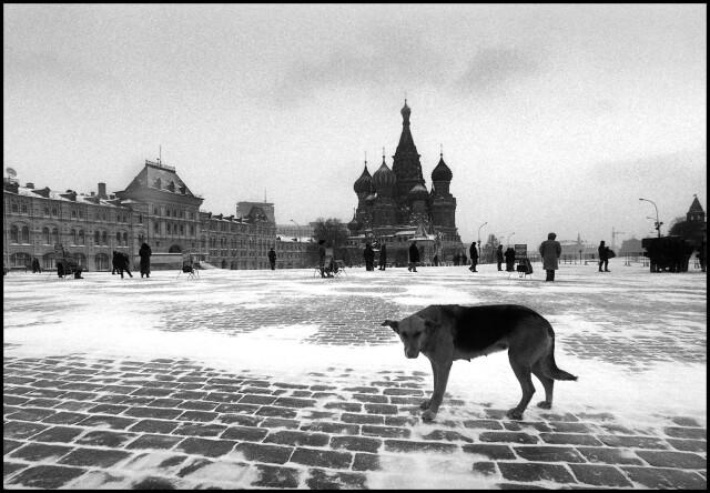 Москва. Январь 1993 год. Фотограф Владимир Богданов