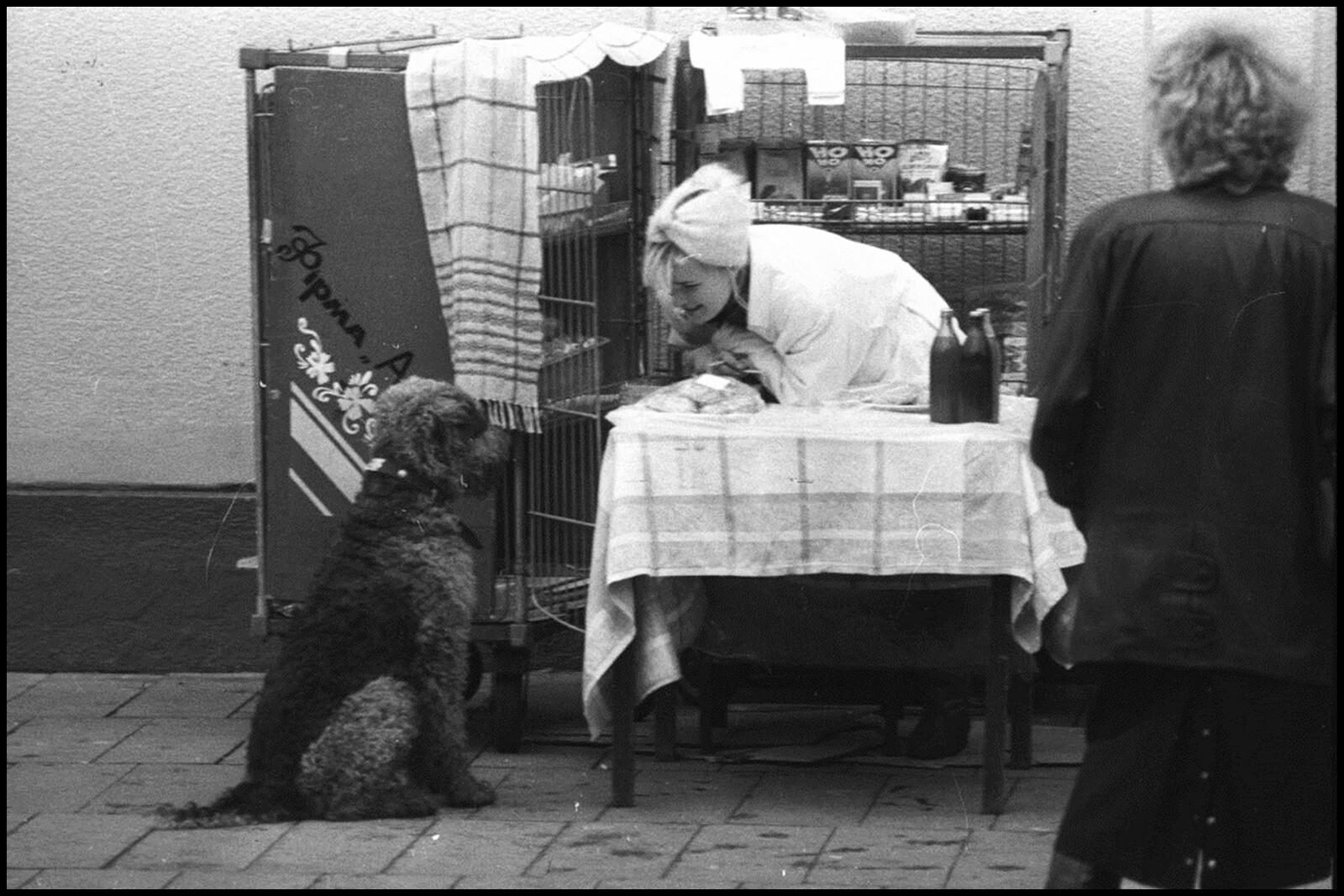 Серия «Собаки». Фотограф Владимир Богданов