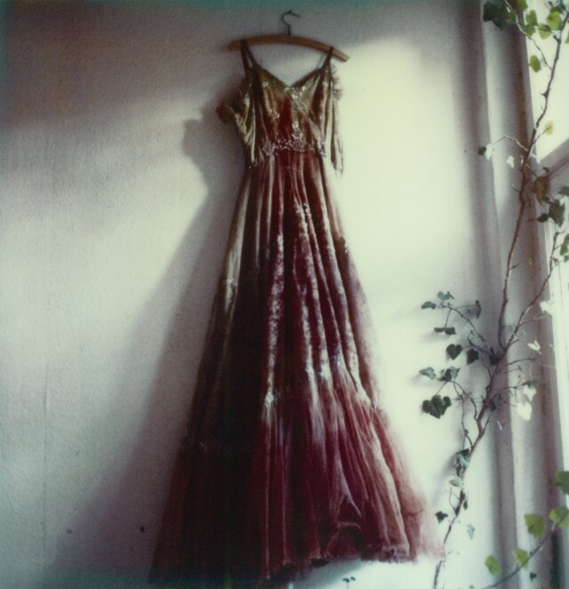 Полароид, 2003 год. Фотограф Сибилла Бергеман