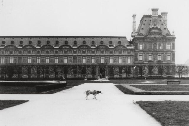 Тюильри, Париж, 1979 год. Фотограф Сибилла Бергеман