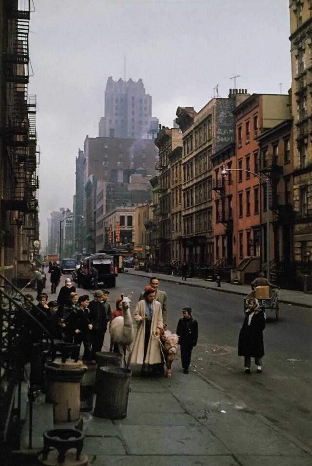США, Нью-Йорк, 1957 год. Фотограф Инге Морат