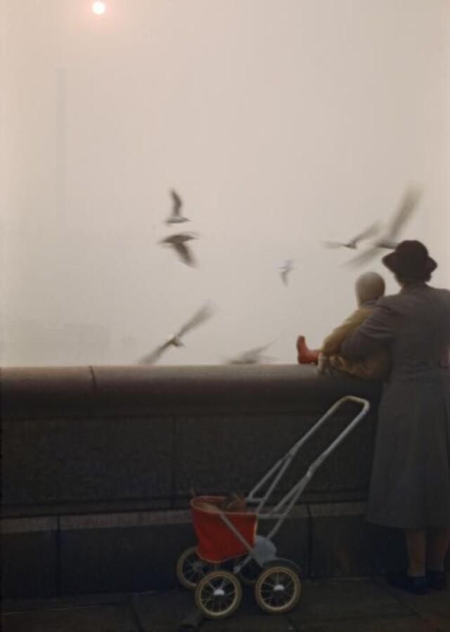 Туман на реке Темзе, Англия, Лондон, 1954 год. Фотограф Инге Морат