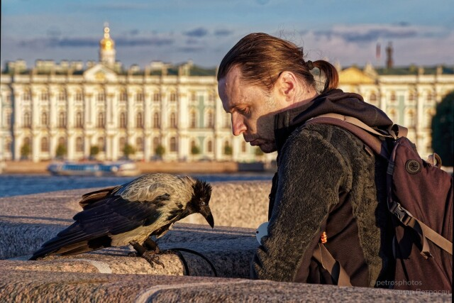 В компании вороны. Фотограф Александр Петросян