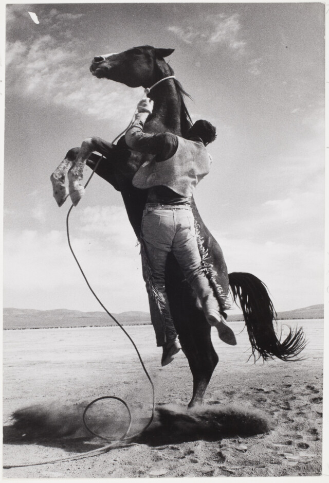 Каскадёр с мустангом на съёмочной площадке «Неприкаянных», 1960. Фотограф Эрнст Хаас