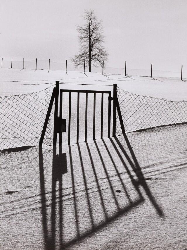 Зима. Фотограф Франтишек Досталь