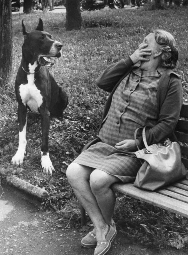 Из серии «Собаки и люди». Фотограф Франтишек Досталь