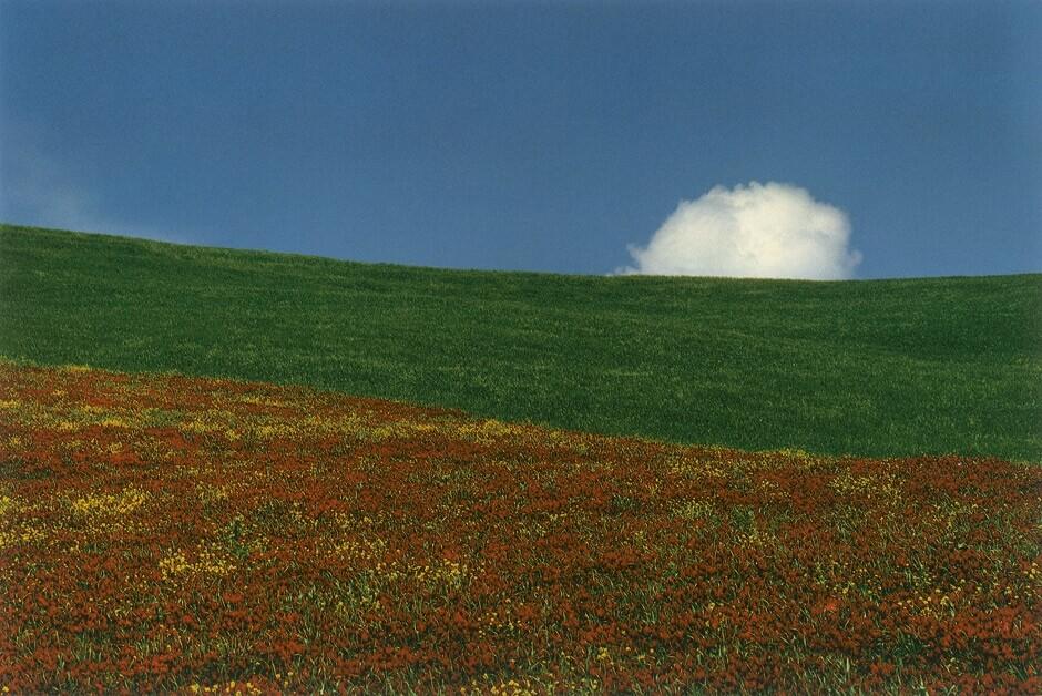 Пейзаж, 1985. Фотограф Франко Фонтана