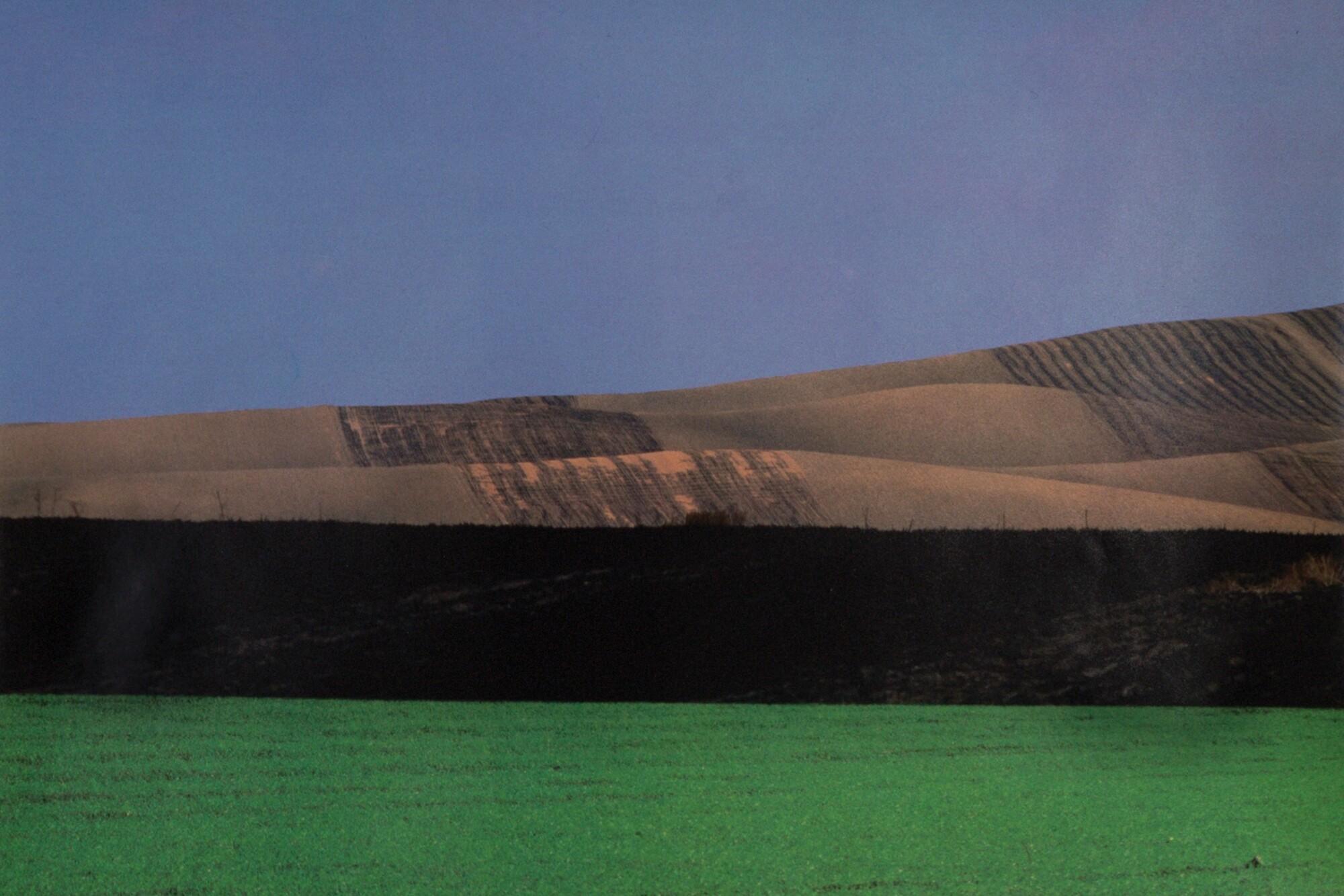 Пейзаж, 1990. Фотограф Франко Фонтана