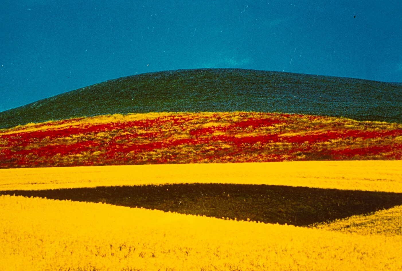 Пейзаж, 1995. Фотограф Франко Фонтана